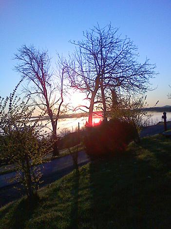 Pomladno jutro