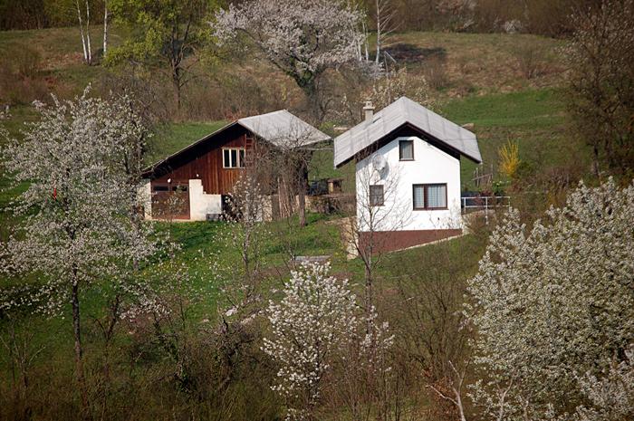 Vse cveti, hišica pa sameva