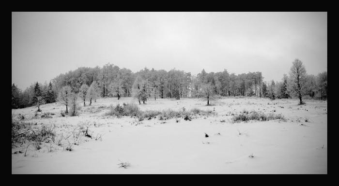 Ledena dežela